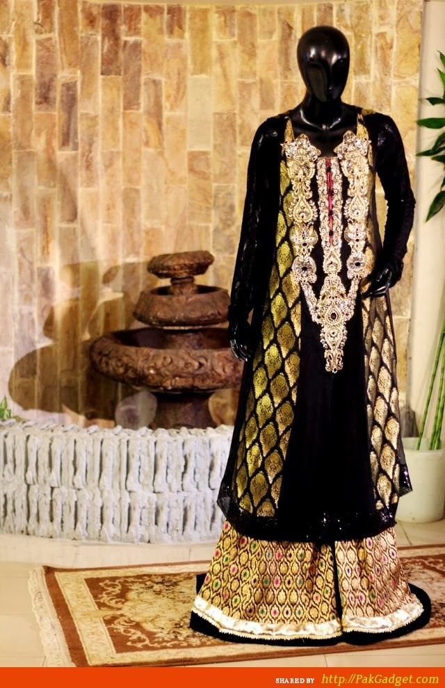 Latest Indian & Pakistani Best Neck-line (Gala) designs for Girls 2014-2015 (18)