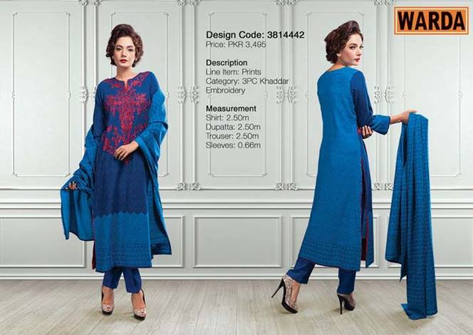 WARDA Designer Ready To Wear Winter Dresses Collection 2014-2015 (24)