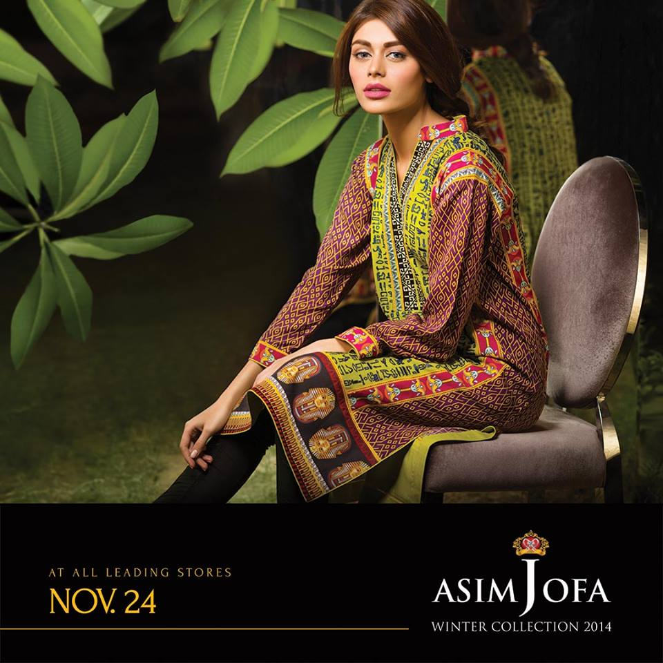 Asim Jofa Latest Winter Embroidered Dresses Collection for Women 2014-2015 (21)