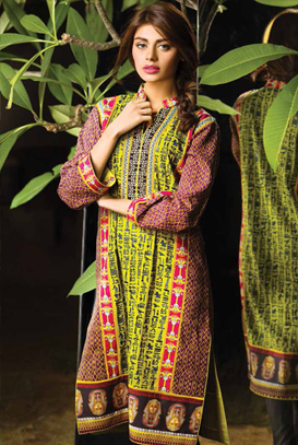 Asim Jofa Latest Winter Embroidered Dresses Collection for Women 2014-2015 (5)