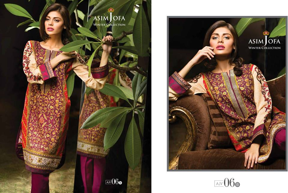 Asim Jofa Latest Winter Embroidered Dresses Collection for Women 2014-2015 (9)