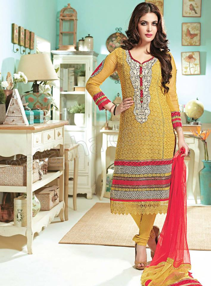 Pakistani & Indian Straight Cut Salwar Suits Designs Latest Collection 2015-2016 (29)