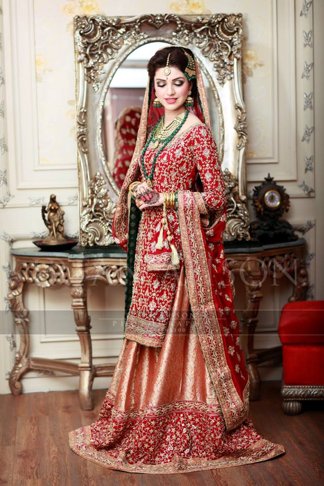Barat Day Wedding Dresses Designs Collection 2016-2017 (14)