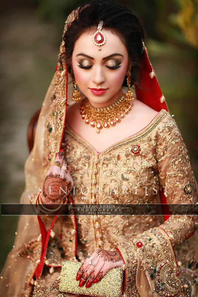 Barat Day Wedding Dresses Designs Collection 2016-2017 (4)