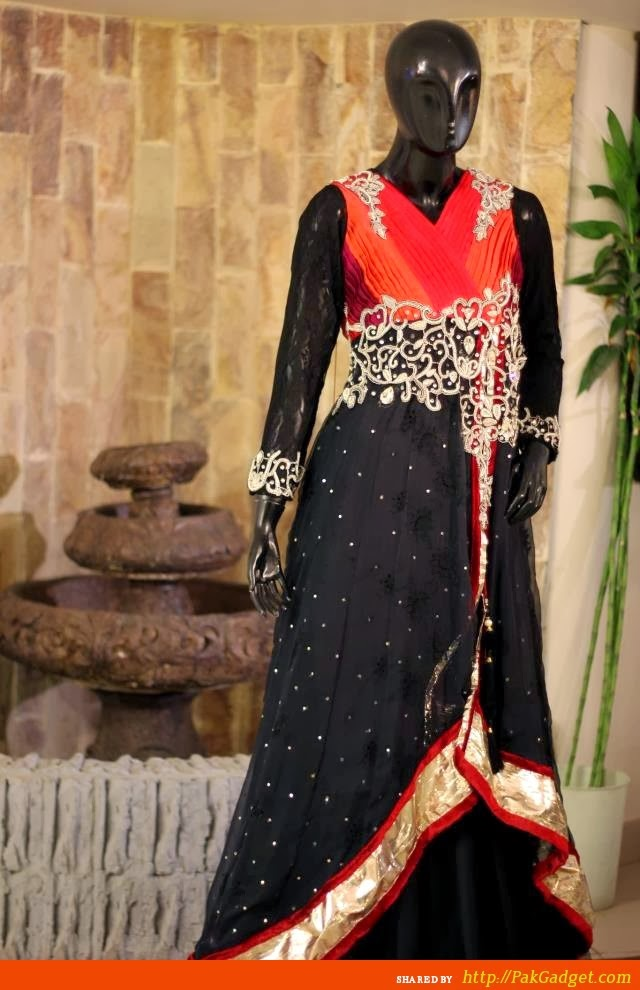 Latest Indian & Pakistani Best Neck-line (Gala) designs for Girls 2014-2015 (17)