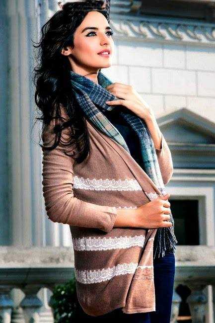 Zeen Cambrige Latest Winter Sweaters Designs & Hoodies Collection for Women 2014-2015 (20)
