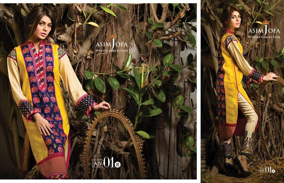 Asim Jofa Latest Winter Embroidered Dresses Collection for Women 2014-2015 (13)