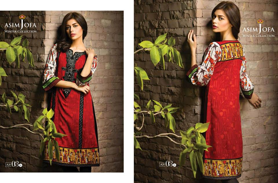 Asim Jofa Latest Winter Embroidered Dresses Collection for Women 2014-2015 (23)