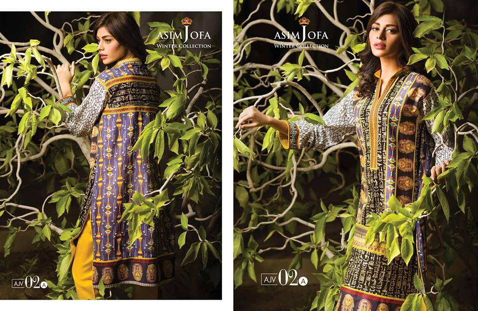 Asim Jofa Latest Winter Embroidered Dresses Collection for Women 2014-2015 (24)