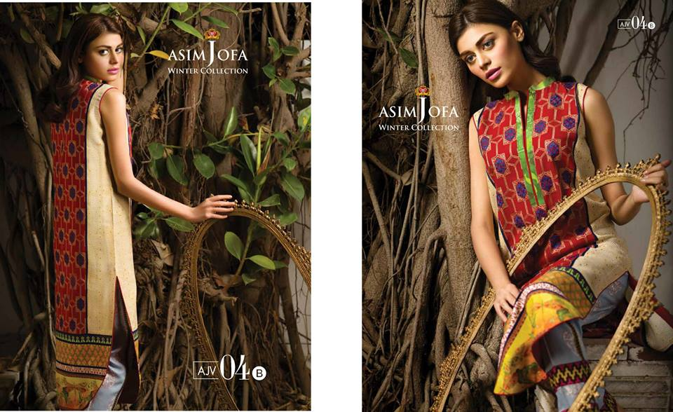 Asim Jofa Latest Winter Embroidered Dresses Collection for Women 2014-2015 (26)