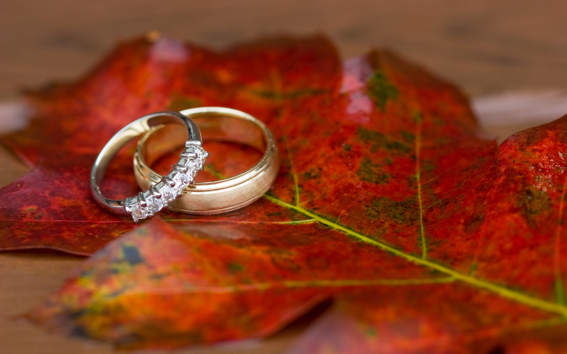 Engagement ring designs for men & women collection 2015-16 (27)
