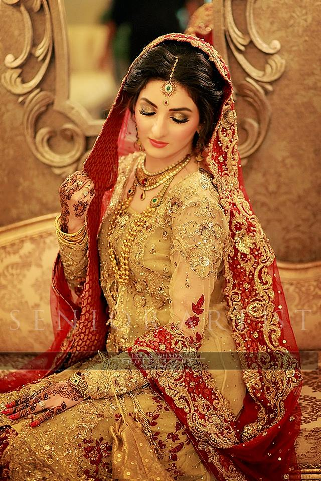 Barat Day Wedding Dresses Designs Collection 2016-2017 (10)