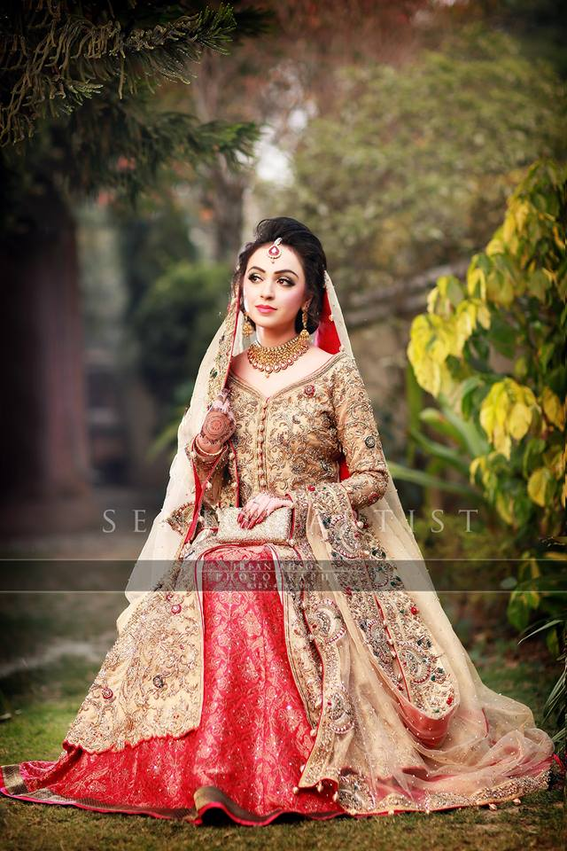 Barat Day Wedding Dresses Designs Collection 2016-2017 (6)